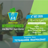 Hydroponic One Day Fast track Course.
